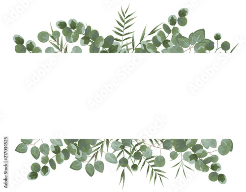 Foto  background for text from eucalyptus