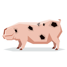 Flat Geometric Gloucestershire Old Pig