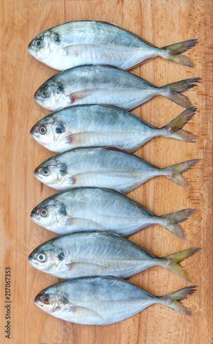 Yellow Tail Scad fish, Decapterus fish, on a wood plate Slika na platnu