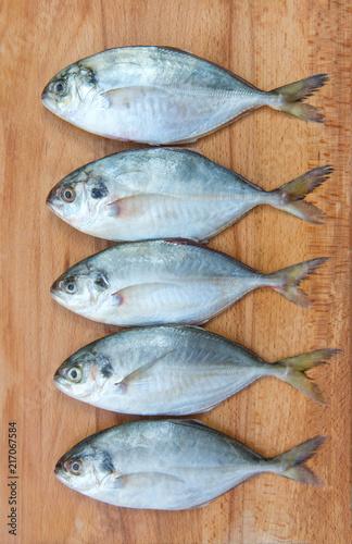 Yellow Tail Scad fish, Decapterus fish, on a wood plate Tapéta, Fotótapéta
