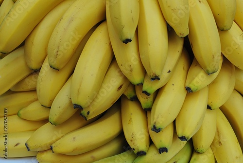 Fototapeta Banany obraz