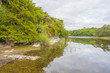 Panorama of edge and surroundings of a lake in a national park in summer