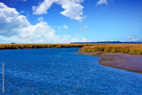 Blue Water at Marsh Edge Poster