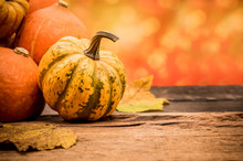 Fall Harvest Cornucopia. Autumn Season With Fruit And Vegetable. Copy Space For Text.