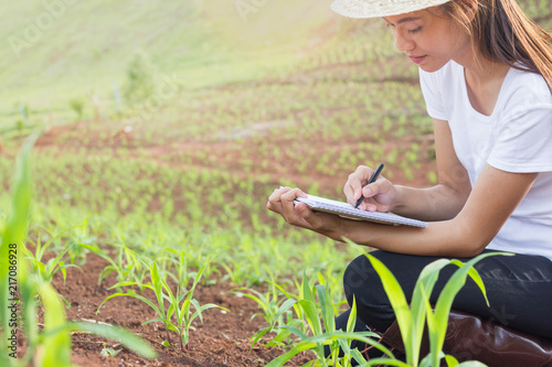 Female researchers are examining and taking notes in the corn seed field Wallpaper Mural