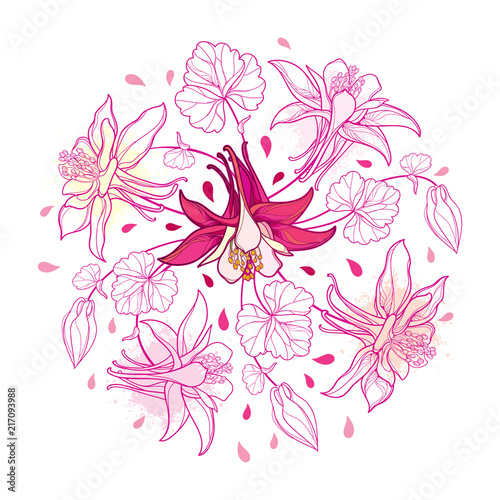 Canvas Print Vector round bouquet with outline Aquilegia or Columbine flower, bud and leaf in pastel pink isolated on white background