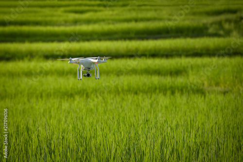Foto  Drone flying over green wheat field in spring