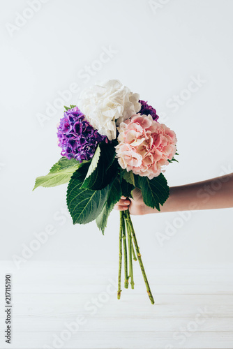 Canvas-taulu cropped view of woman holding bouquet of colorful blooming hydrangea flowers, on