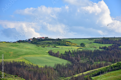 Italy, Puglia region, typical hilly landscape in spring