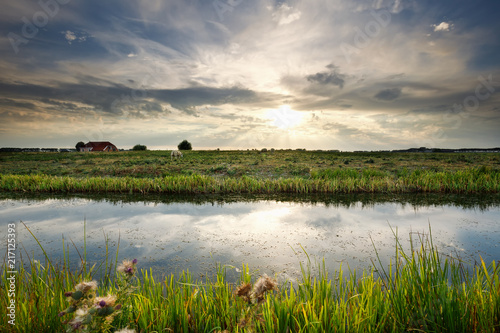 Foto sunlight over canal and pasture
