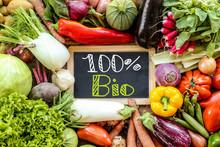 Légumes Du Jardin Printemps / été