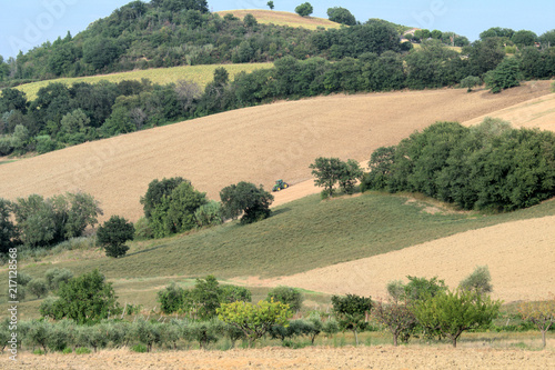 Tuinposter Khaki agriculture,landscape,summer,field,countryside,hill,panorama,rural,view