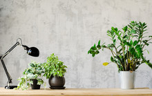 A Desk For Working With A Lamp And Flowers On Wooden Surface And A Concrete Gray Wall On The Background. Copy Space