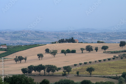 countryside,hill,Italy,field,panorama,agriculture,landscape,rural,summer
