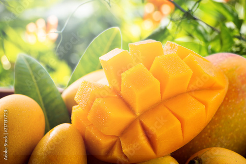 Obraz na plátne Fresh and beautiful mango fruit in a bamboo basket on nature backgrounds, copy space(text space), blank for text