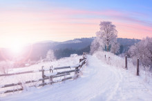 Beautiful Winter Nature Landscape, Amazing Mountain View Of Sunset. Scenic Image Of Snowy Woodland.
