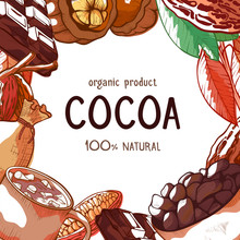 Cocoa Beans Hand Drawn Vector Frame Background