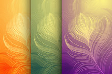 Set Of Vector Colorful Backgrounds With Peacock Feathers