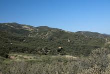 Stone Chair Panoramic Lake Hughes Road California