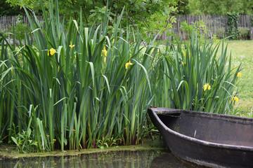 Promenade en barque sur les canaux du marais poitevin à Maillezais en Vendée.