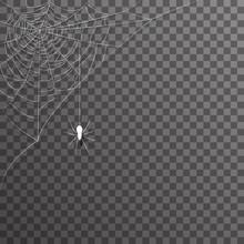 Transparent Background Corner Decoration Hanging Spider Web Halloween Vector Illustration