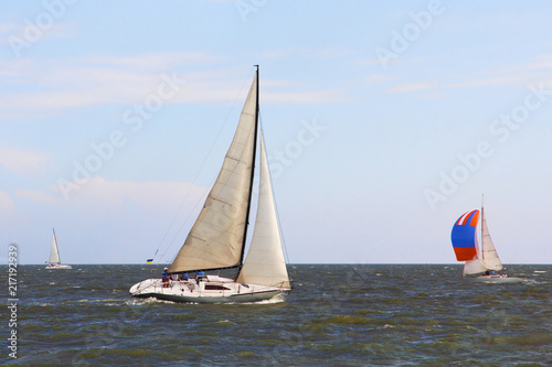 Láminas  Sailing Boat Yachts at Sea. Round the cans race.