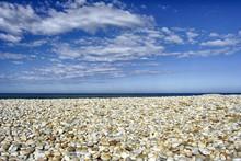 Empty Pebble Beach