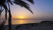 Seascape with sunrise, sandy beach and palm tree, timelapse.