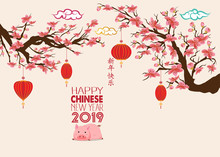 Happy Chinese New Year 2019, Y...