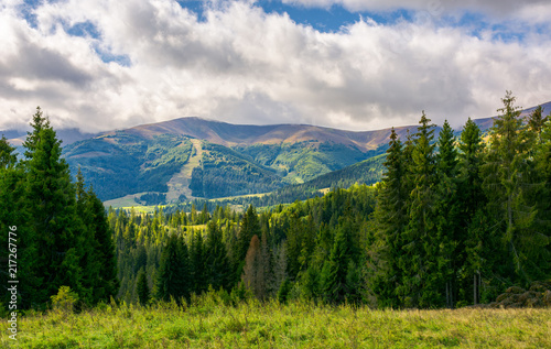 Fototapeta beautiful landscape with forested hills. autumn landscape in wonderful sunny weather and low clouds hanging over the distant mountain obraz