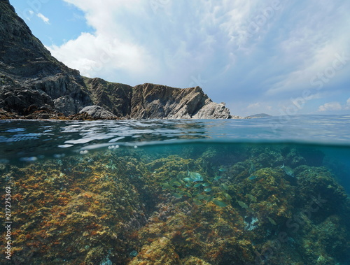 Foto op Plexiglas Kust Rocky coast with fish underwater in the Mediterranean sea, split view above and below water surface, Marine reserve of Cerbere Banyuls, Pyrenees Orientales, France