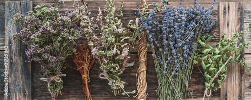 Fotografie, Obraz Getrocknete Heilpflanzen und Arzneikräuter, Honöopathie und Kochen