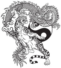 Chinese Dragon Versus Tiger. B...