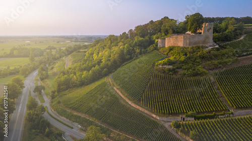Castle in Germany and grape fields from a bird's eye view at sunset Canvas Print