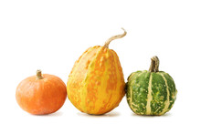 Three Small Decorative Pumpkins Of Yellow, Green And Orange Colors Isolated On White Background