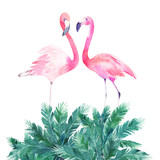 Couple pink flamingos. Watercolor print for invitation, birthday, celebration, greeting card - 217339906
