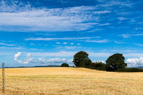 In de dag Blauw Strange cloud formations over a wheat field in Wales