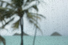 Raindrops On Window In Tropica...
