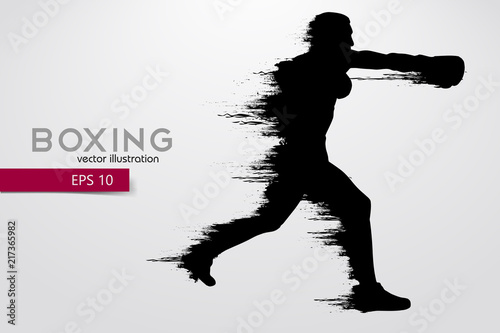 Boxing silhouette. Boxing. Vector illustration Canvas Print