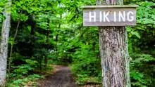 Hiking Sign At Trail Entrance