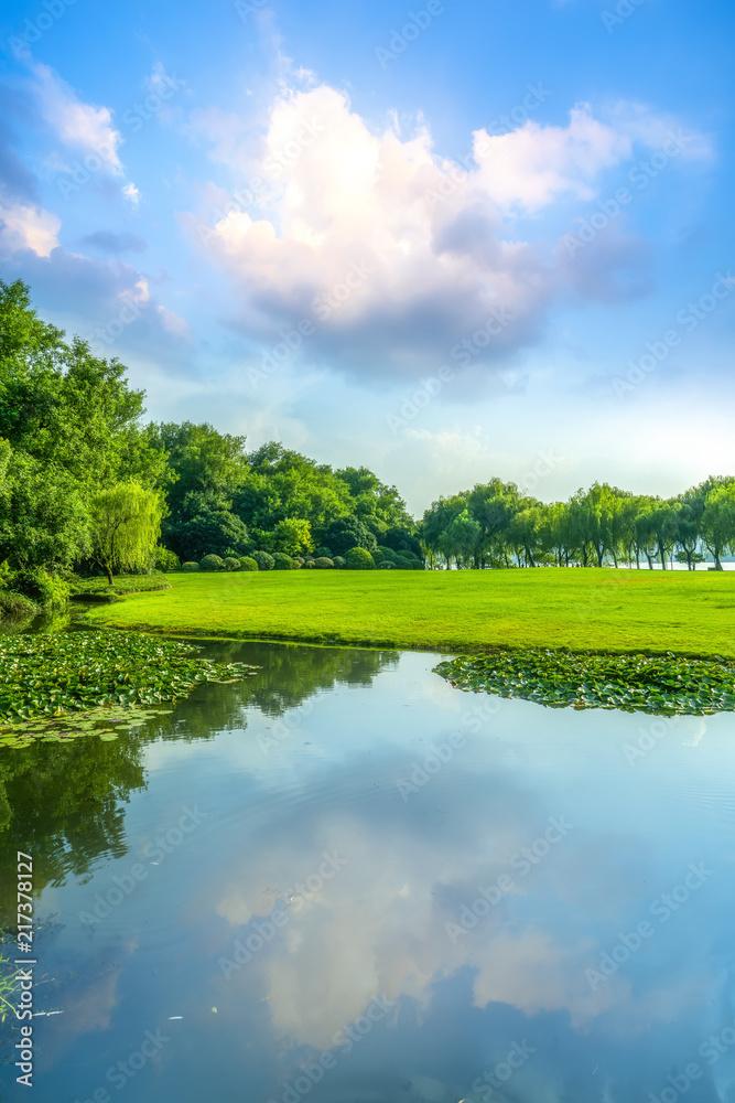Fototapeta Grass and green woods in the park - obraz na płótnie