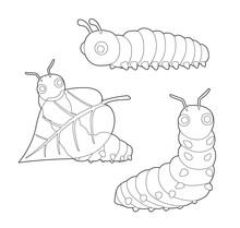 Insect Set Cute Caterpillar Ca...