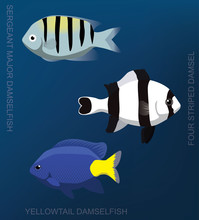 Reef Damselfish Set Cartoon Ve...