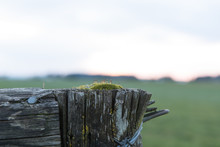 Rustic Wood Fence Post With Moss