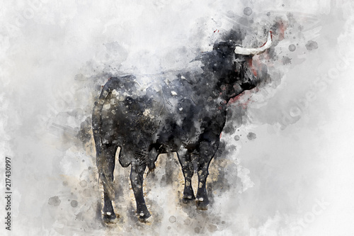 Watercolor, Bullfight. Fighting bull picture from Spain. Black bull