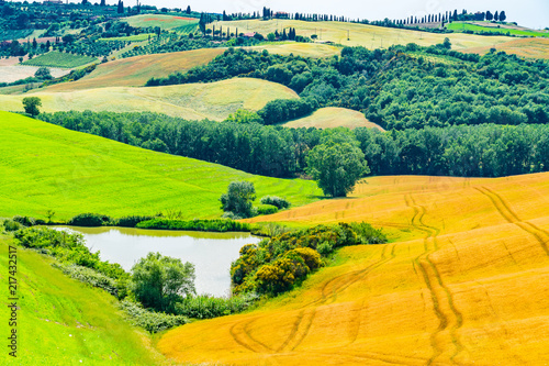 In de dag Lime groen Beautiful landscape of the hilly Tuscany in Valdorcia, Italy