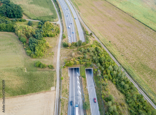 Photo Aerial view of wildlife overpass over highway in Switzerland during sunset