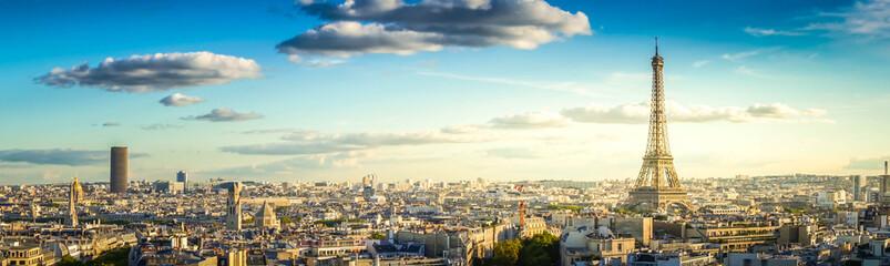 panorama słynnej Wieży Eiffla i paryskich dachów, Paryż Francja, retro stonowanych
