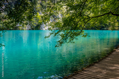 Canvas Prints Green coral Beautiful view in Plitvice Lakes National Park. Croatia