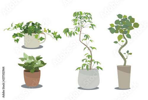 観葉植物2 Adobe Stock でこのストックイラストを購入して類似の